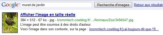 http://krommlech.cowblog.fr/images/Bidules/Imprecr/Google-copie-1.jpg
