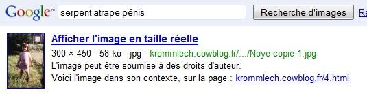 http://krommlech.cowblog.fr/images/Bidules/Imprecr/Google2.jpg