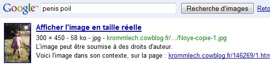 http://krommlech.cowblog.fr/images/Bidules/Imprecr/Google5.jpg