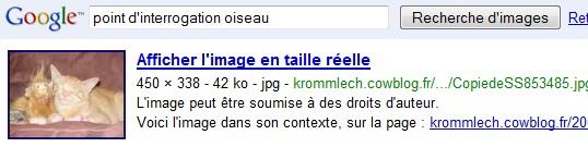 http://krommlech.cowblog.fr/images/Bidules/Imprecr/Google6.jpg